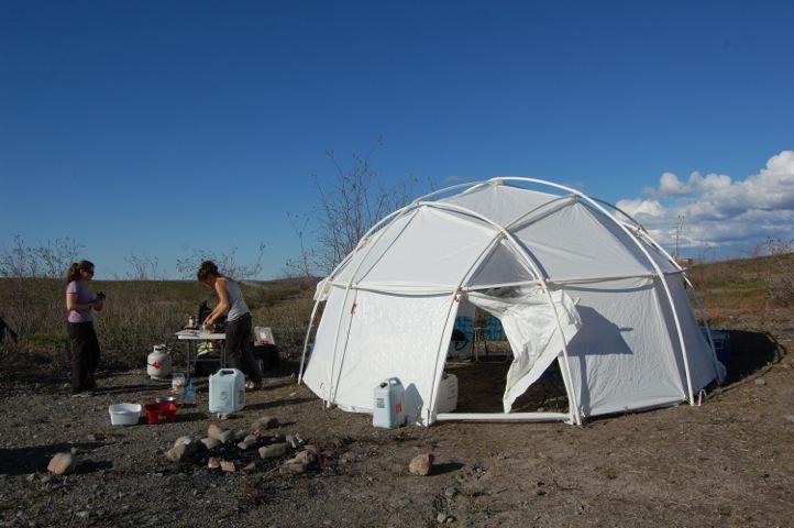 12 arctic dome