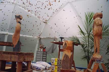 studio tent