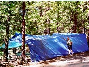 tarp shelter5