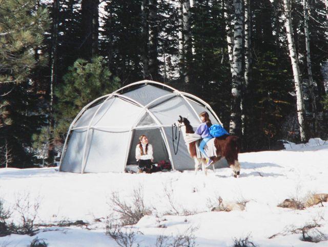 winter dome llama 4
